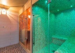 Stoomcabine en sauna van Alpha Wellness